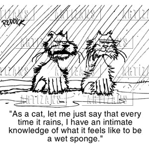ernst hemingway cat in the rain 1-16 of 53 results for ernest hemingway cats funny cat mug, ernest hemingway quote an interpretation of ernest hemingway's cat in the rain aug 14, 2012.